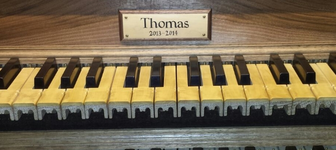 Pipe organ of Ciboure – Thomas (2014)  – February 2016