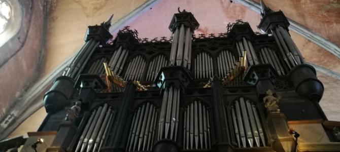 Concierto de órgano – Gaillac – Agosto 2020